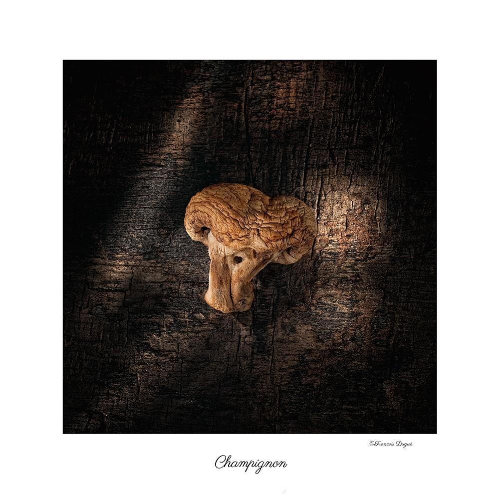 champignon, nature morte, champignon de paris, francois dugue photographe, françois dugué photographe rouen, auteur photographe françois dugue,photographie culinaire, photographe culinaire.