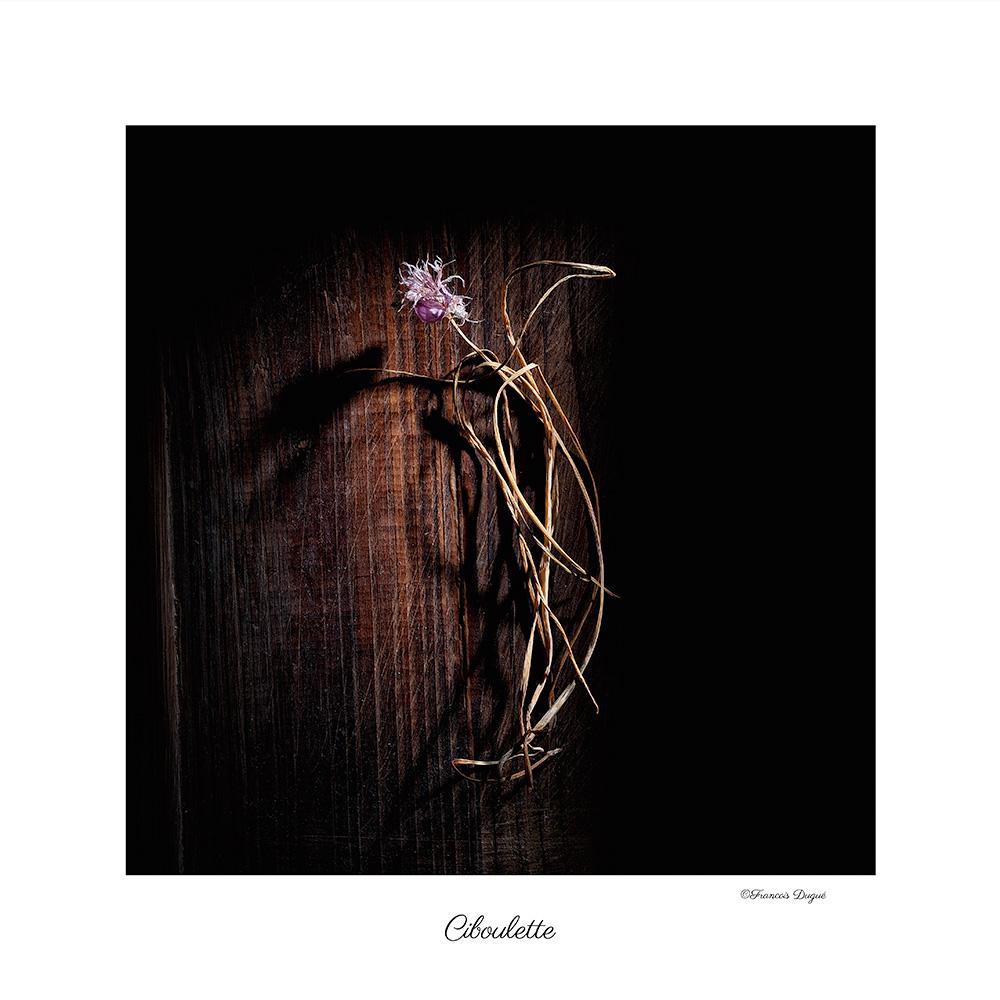 ciboulette, photographie culinaire, photographe culinaire rouen, françois dugué photographe, francois dugue photographe rouen, françois fugué auteur photographe rouen, nature morte